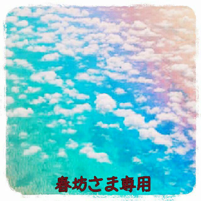 メルカリ - 春坊 【バッジ】 (¥2...