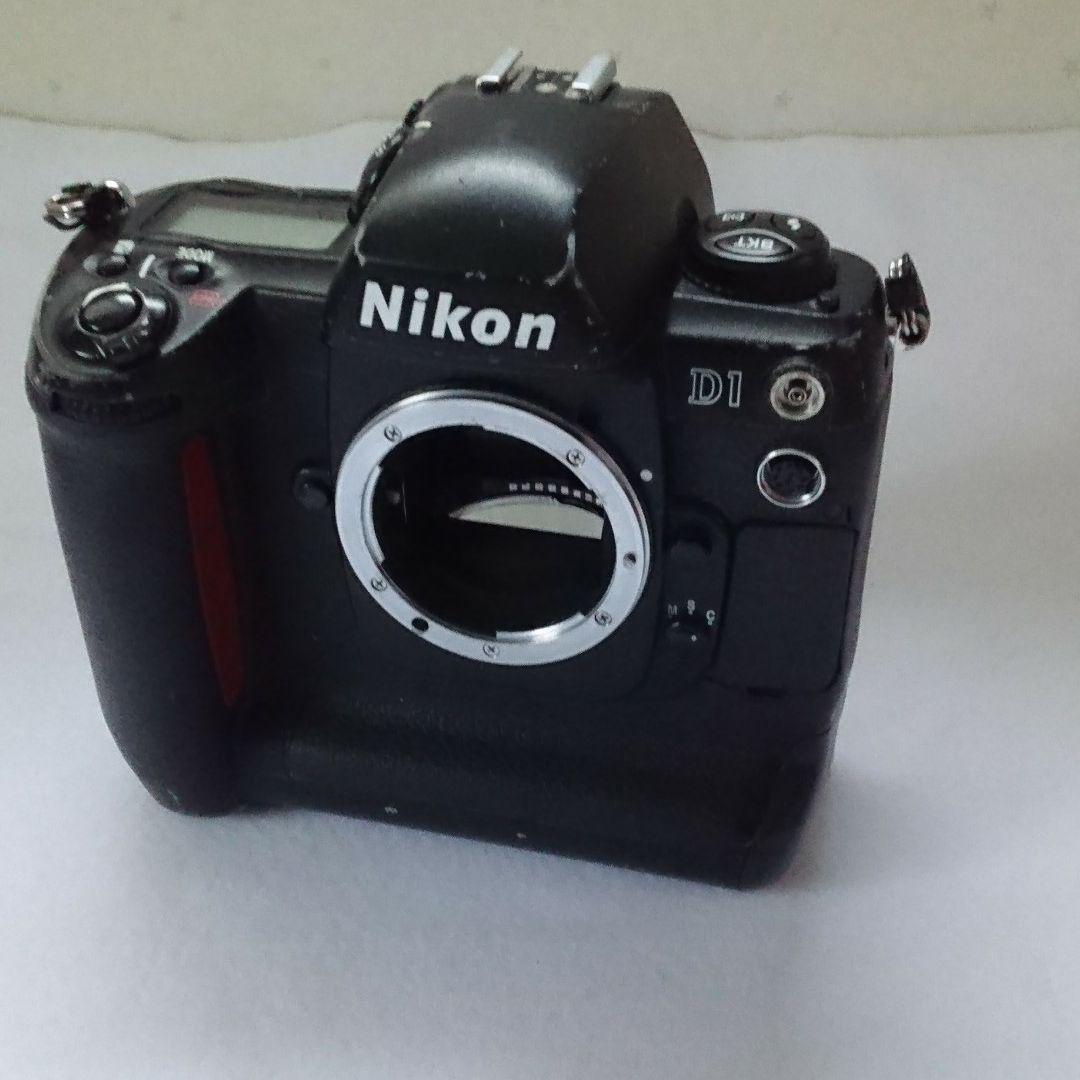 Nikon D1 3980