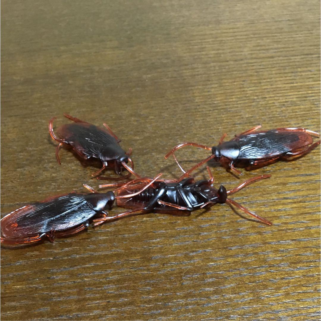 [ベストセレクション] スティッチ は ゴキブリ
