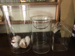 無印良品 ガラス小物容器 花瓶 フラワーベース 水栽培